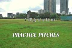 Aarey Bhaskar Ground Practice pitch Images 2