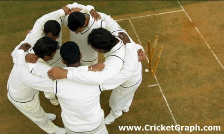 job-for-cricketers