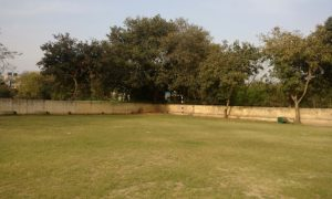 DTEA School Cricket Ground