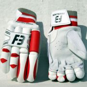 Fireblaze Player Choice Cricket Gloves