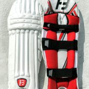 Fireblaze Cricket Pads