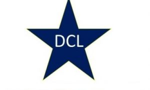 Delhi Cricket League Academy